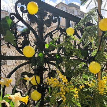 guirlande led guinguette jaune